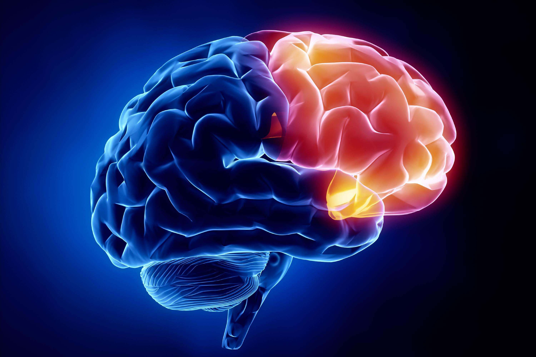 Neurólogos en Monterrey